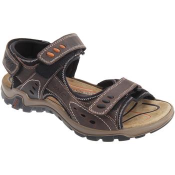 Sapatos Homem Sandálias desportivas Imac  Brown