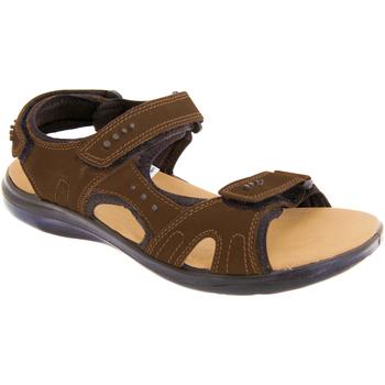 Sapatos Homem Sandálias desportivas Roamers  Brown