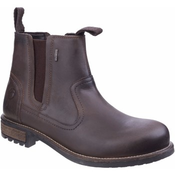 Sapatos Homem Botas baixas Cotswold Worcester Brown