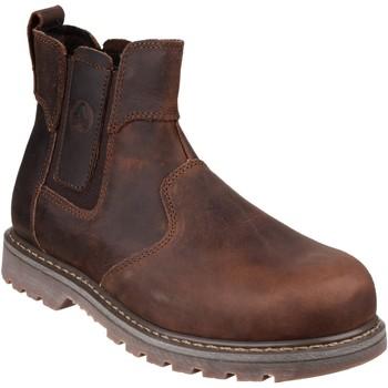 Sapatos Mulher Botas baixas Amblers  Brown