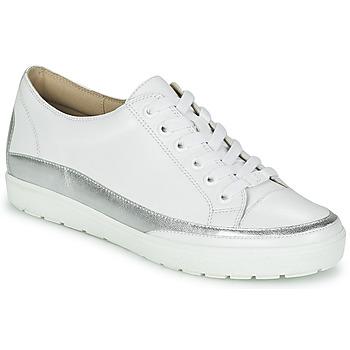 Sapatos Mulher Sapatilhas Caprice BUSCETI Branco / Prateado