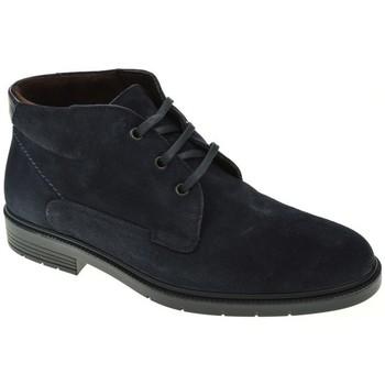 Sapatos Homem Botas baixas Ricardo Hernandez 4926 azul