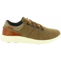 Sapatos Homem Sapatilhas Lois 84734 Marrón