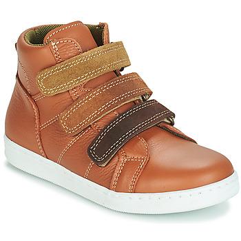 Sapatos Rapaz Botas baixas André TRITON Camel