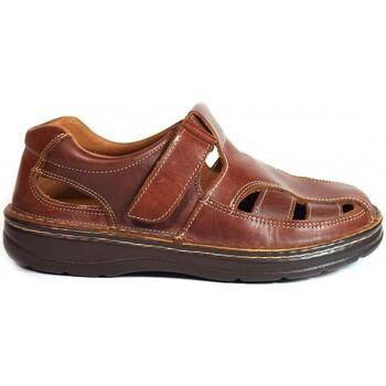 Sapatos Homem Sandálias La Valenciana Sandalias  822 Cuero Castanho