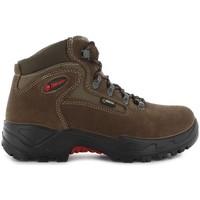 Sapatos Sapatos de caminhada Chiruca Botas  Massana 02 Gore-Tex Castanho