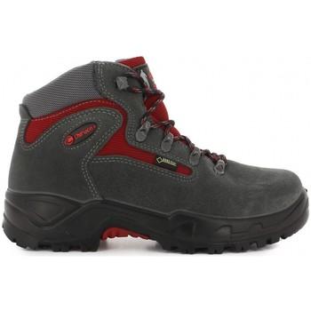 Sapatos Sapatos de caminhada Chiruca Botas  Massana 05 Gore-Tex Cinza