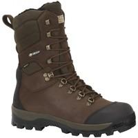 Sapatos Sapatos de caminhada Chiruca Botas  Mistral 21 Goretex Verde