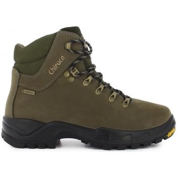 Sapatos Sapatos de caminhada Chiruca Botas  Cares 01 Gore-Tex Verde