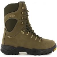 Sapatos Sapatos de caminhada Chiruca Botas  Forest 01 Gore-Tex Verde