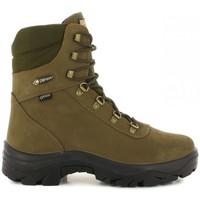 Sapatos Sapatos de caminhada Chiruca Botas  Vaguada 01 Goretex Verde