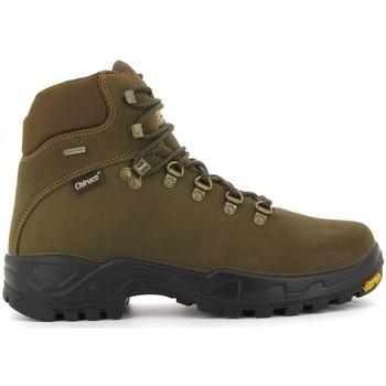 Sapatos Sapatos de caminhada Chiruca Botas  Trofeo 01 Gore-Tex Verde