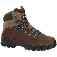 Sapatos Sapatos de caminhada Chiruca Botas  Xacobeo 27 Gore-Tex Castanho