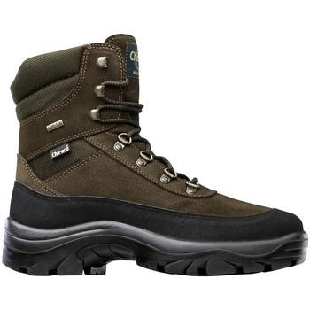 Sapatos Sapatos de caminhada Chiruca Botas  Torcaz 15 (Bandeleta) Goretex Verde