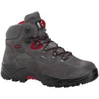 Sapatos Sapatos de caminhada Chiruca Botas  Mulhacen 19 Goretex Cinza