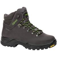 Sapatos Sapatos de caminhada Chiruca Botas  Cares 05 Gore-Tex Cinza