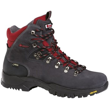 Sapatos Sapatos de caminhada Chiruca Botas  Dynamic 05 Goretex Cinza