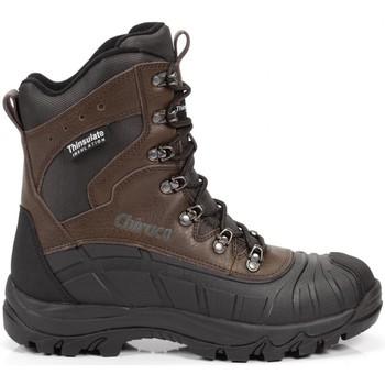 Sapatos Sapatos de caminhada Chiruca Botas  Patagonia 12 Castanho