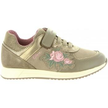 Sapatos Rapariga Sapatilhas Geox J846FB 0AU54 J JENSEA Beige