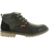 Sapatos Homem Botas Lois 84348 26 NEGRO Negro