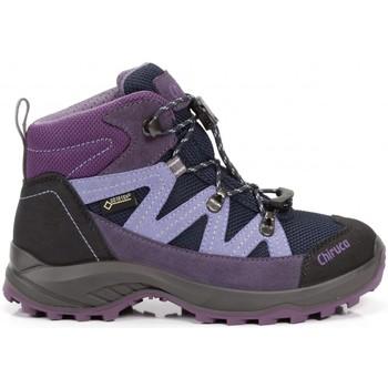 Sapatos Criança Botas Chiruca Botas  Troll 06 Gore-Tex Violeta