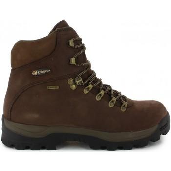 Sapatos Botas Chiruca Botas  Urales 12 Gore-Tex Castanho