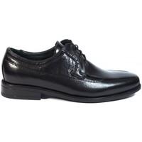 Sapatos Homem Sapatos Luisetti Zapatos Finos  19303 Negro Preto