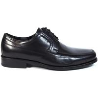 Sapatos Homem Sapatos Luisetti Zapatos Finos  19301 Negro Preto