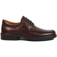Sapatos Homem Sapatos Luisetti Zapatos  0103 Marrón Castanho
