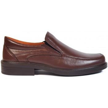 Sapatos Homem Mocassins Luisetti Zapatos  0106 Marrón Castanho