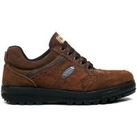 Sapatos Homem Sapatilhas Segarra Zapatillas  3301 Marrón Castanho