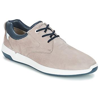 Sapatos Homem Sapatilhas Lloyd ACHILLES Bege