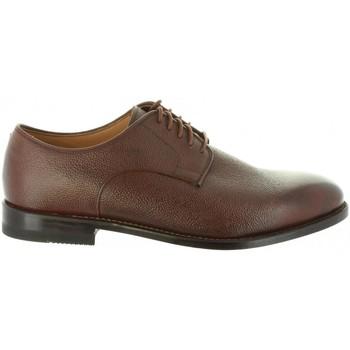 Sapatos Homem Sapatos Clarks 26130850 ELLIS Marrón