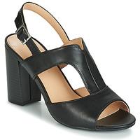Sapatos Mulher Sandálias Moony Mood JALILIA Preto