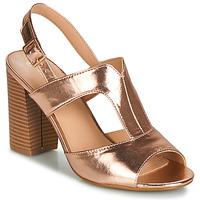 Sapatos Mulher Sandálias Moony Mood JALILIA Bronze