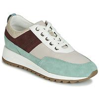 Sapatos Mulher Sapatilhas Geox D TABELYA Bege / Castanho / Verde