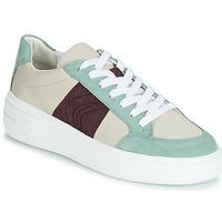 Sapatos Mulher Sapatilhas Geox D OTTAYA Creme / Verde
