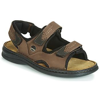 Sapatos Homem Sandálias Josef Seibel FRANKLIN Castanho