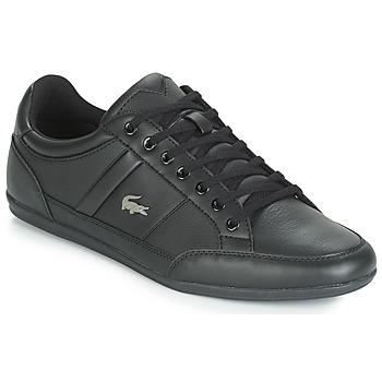 Sapatos Homem Sapatilhas Lacoste CHAYMON BL 1 Preto