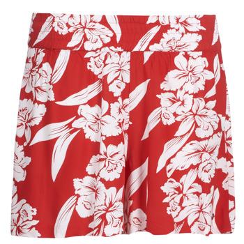 Textil Mulher Shorts / Bermudas Volcom ALOHA HA SHORT Vermelho