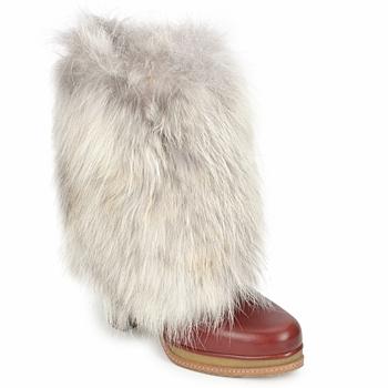 Sapatos Mulher Botins D&G DS3553 Castanho / Bege