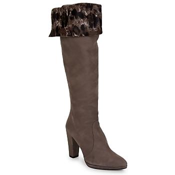 Sapatos Mulher Botas Stuart Weitzman ZOOKEEPER Pedra