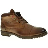 Sapatos Homem Botas Urbanfly 8103 castanho