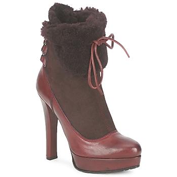 Sapatos Mulher Botins Sebastian ELIATY Bordô