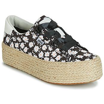 Sapatos Mulher Sapatilhas MTNG WANDA Branco / Preto