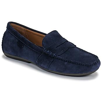 Sapatos Homem Mocassins Polo Ralph Lauren REYNOLD Marinho