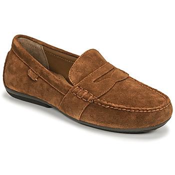 Sapatos Homem Mocassins Polo Ralph Lauren REYNOLD Castanho