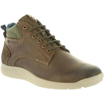 Sapatos Homem Botas baixas Wrangler WM182150 MOOSE Marr?n