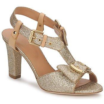 Sapatos Mulher Sandálias Sonia Rykiel DEFIL GAT Ouro