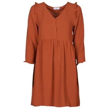 Textil Mulher Vestidos curtos Betty London JABALA Castanho